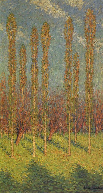 poplars-in-spring